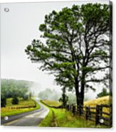 Parkway Mist Acrylic Print