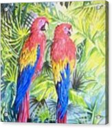 Parrots In Jungle Acrylic Print