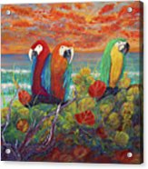 Parrots On Sunset Beach Acrylic Print