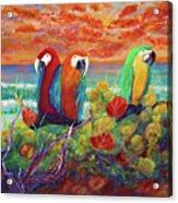 Parrots On The Beach Painterly Acrylic Print
