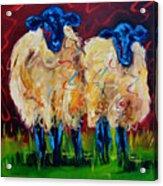 Party Sheep Acrylic Print