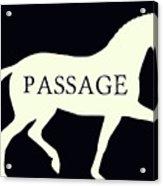 Passage Negative Acrylic Print