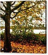 Passage Through The Fall Acrylic Print