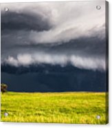 Passing By - Storm Passes By Lone Tree In Western Nebraska Acrylic Print