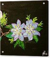 Passion Flowers Acrylic Print