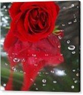 Passion In The Rain Acrylic Print