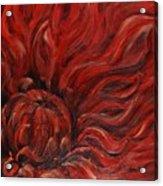 Passion Iv Acrylic Print
