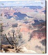 Pastel Canyon Acrylic Print