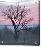 Pastel Fog Acrylic Print