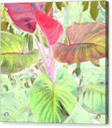 Pastel Hearts Acrylic Print