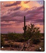 Pastel Sonoran Skies At Sunset  Acrylic Print