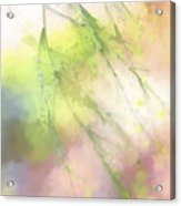 Pastel Spring Whispers Acrylic Print