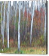 Pastel Tree Abstract Acrylic Print