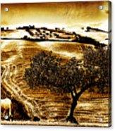 Pastelero Textures Acrylic Print