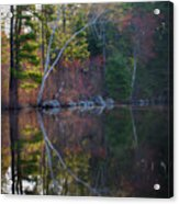 Pastels In Reflection  Acrylic Print