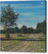 Pastoral Off Poplar Hill Road Acrylic Print