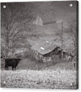 Pasture Field And Barns Acrylic Print