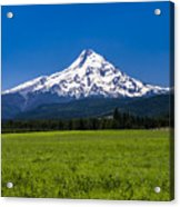 Pasture View Of Mt. Hood Acrylic Print