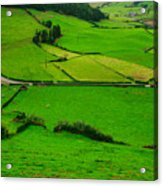 Pastures In The Azores Acrylic Print