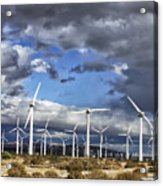 Patch Of Blue Palm Springs Acrylic Print