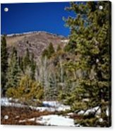 Patches Of Snow Acrylic Print