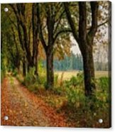 Path Along The Horses Meadow On The Farm Lovedayvale L B Acrylic Print
