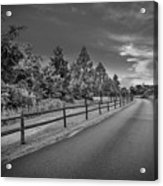Path - Black And White Acrylic Print