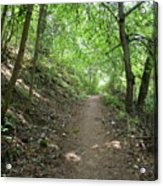 Path By The River Acrylic Print