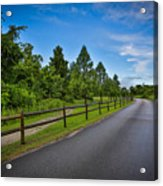 Path - Color Acrylic Print