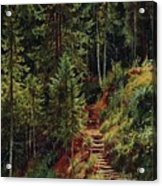 path in the woods 55h34 Ivan Ivanovich Shishkin Acrylic Print