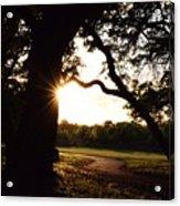 Path Into The Sun Acrylic Print
