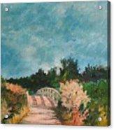 Path Over The Bridge At Robinson Preserve Acrylic Print