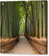 Path Through A Bamboo Grove In Kyoto Acrylic Print