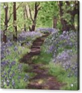 Path Through The Bluebells Acrylic Print
