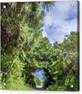 Path To Huntington Beach Acrylic Print