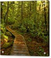 Path To Serenity Acrylic Print
