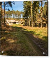 Path To St Cuthbert's Cave Acrylic Print
