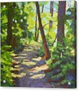 Path To The Lake Acrylic Print