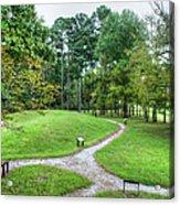 Path To The Mound Acrylic Print