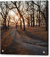 Path To The Sun Acrylic Print
