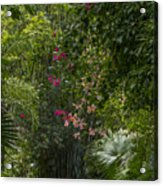 Path With Flowers Acrylic Print