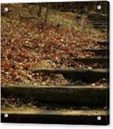 Paths Of The Seasons Acrylic Print