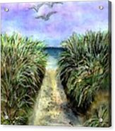 Pathway To The Shore Acrylic Print