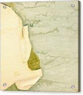 Patina 5 Acrylic Print