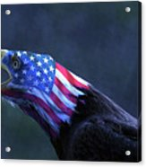 Patriot Eagle Acrylic Print