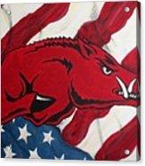 Patriot Hog Acrylic Print by Nathan Grisham