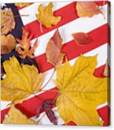 Patriotic Autumn Colors Acrylic Print
