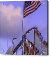 Patriotic Egret Acrylic Print