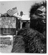 Patriotic Gorilla Pitchman July 4th Mattress Sale Tucson Arizona 1991  Acrylic Print