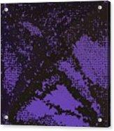Pattern 104 Acrylic Print